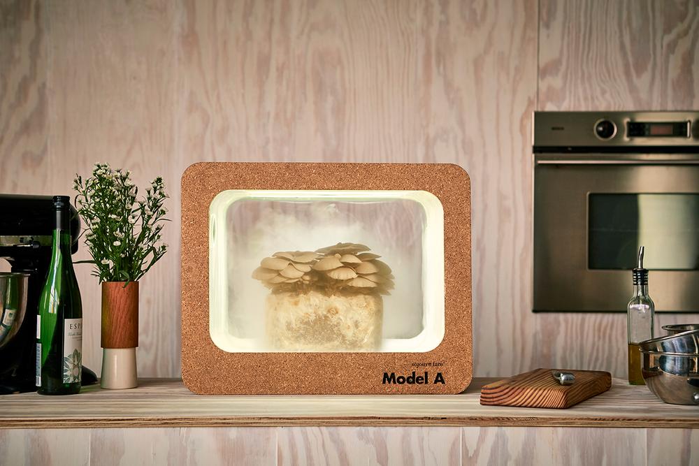 ModelA_Kitchen.png