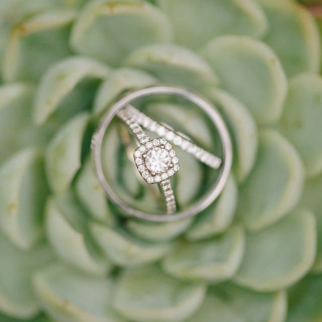 Ringspiration 😍✨ Photo: @marieskerlphoto