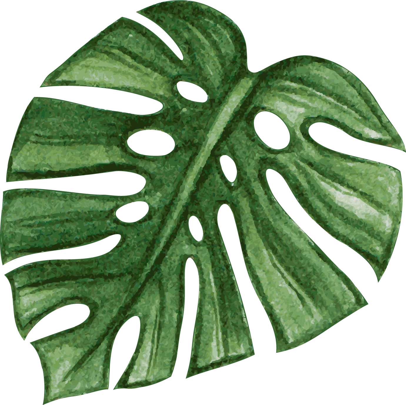 palm08.png