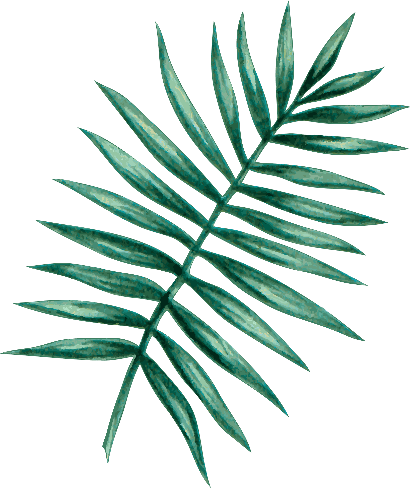 palm05.png