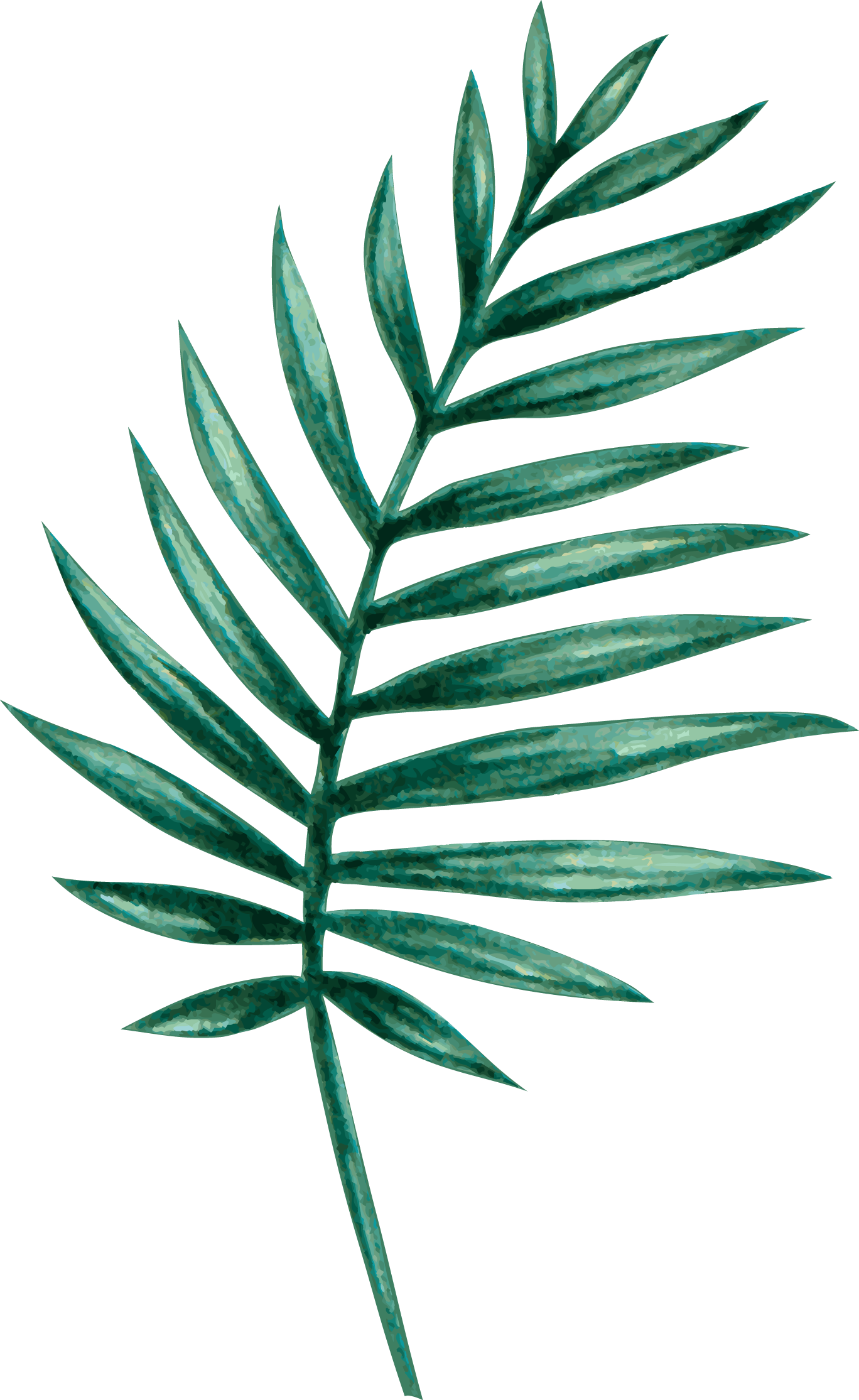 palm06.png