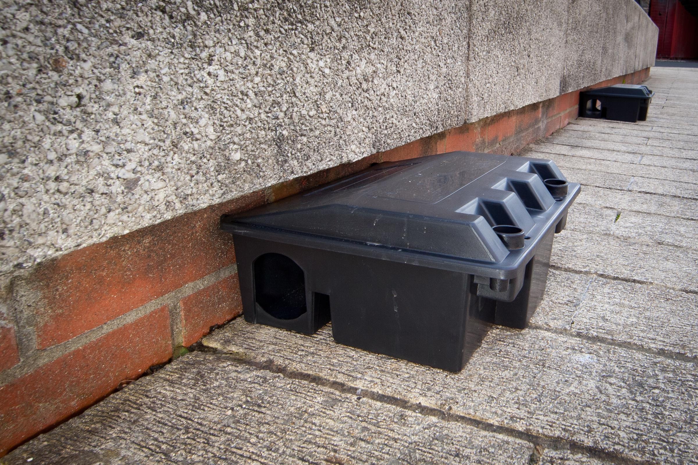 rodent control rat box.JPG