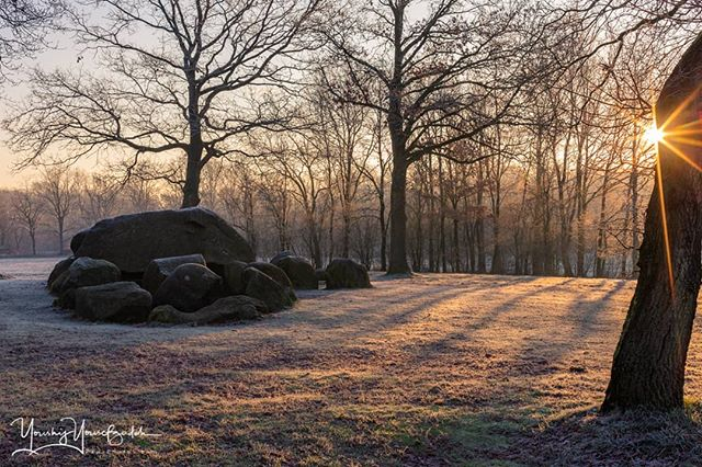#nature #sunrise #cold #history #dutch #trees #coldday #historynerd #ig_discover_holland #tree #sunrise_lovers #historylover #super_holland #tree_magic #sunrise_and_sunsets #coffee #historygeek #dutch_connextion #naturelovers #sunrises #historybuff #dutch_connection #treescape #sun #historylesson #holland #landscape #youshij #yousefzadeh #papaphotos