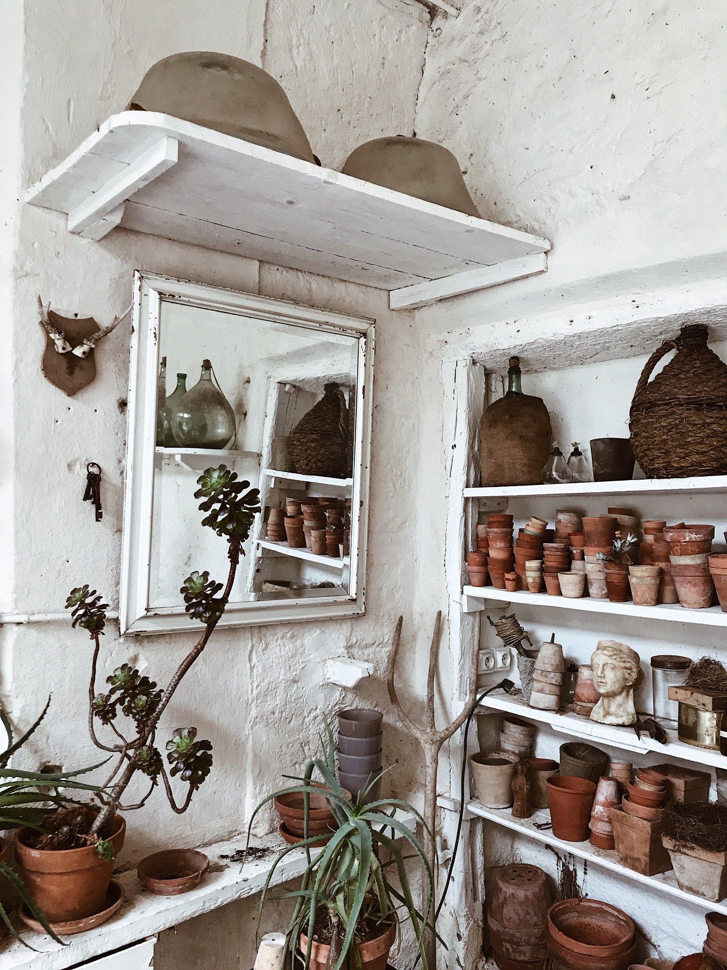 camellas-lloret-maison-d'hotes-greenhouse-shelves-pots.jpg
