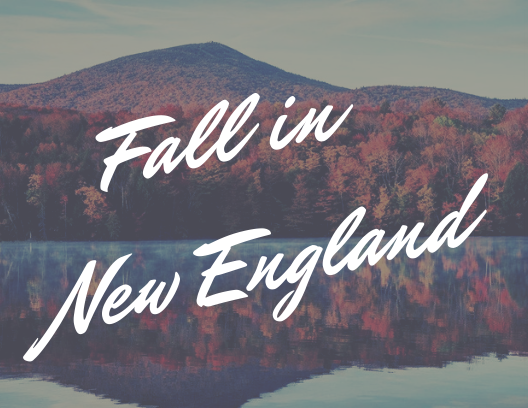 Fall in New England.png