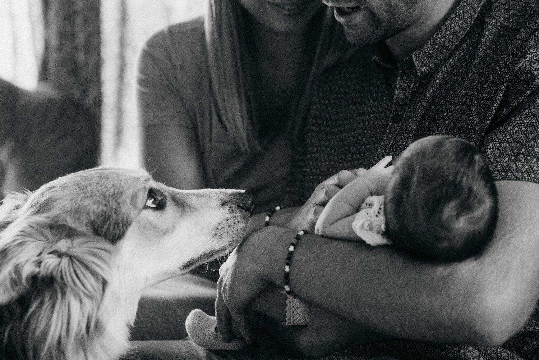 newborn-fotos-casa10.jpg