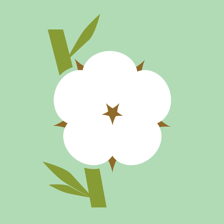 02_Cleanic_SPA_bamboo.jpg