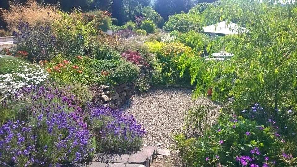 BoruDecor_garden