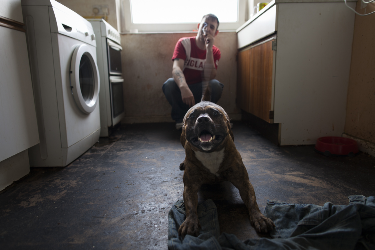 Sean with his dog in the kitchen of his flat. The dog spent practically the whole time locked in the house. As soon as anyone arrived it went crazy with excitement.