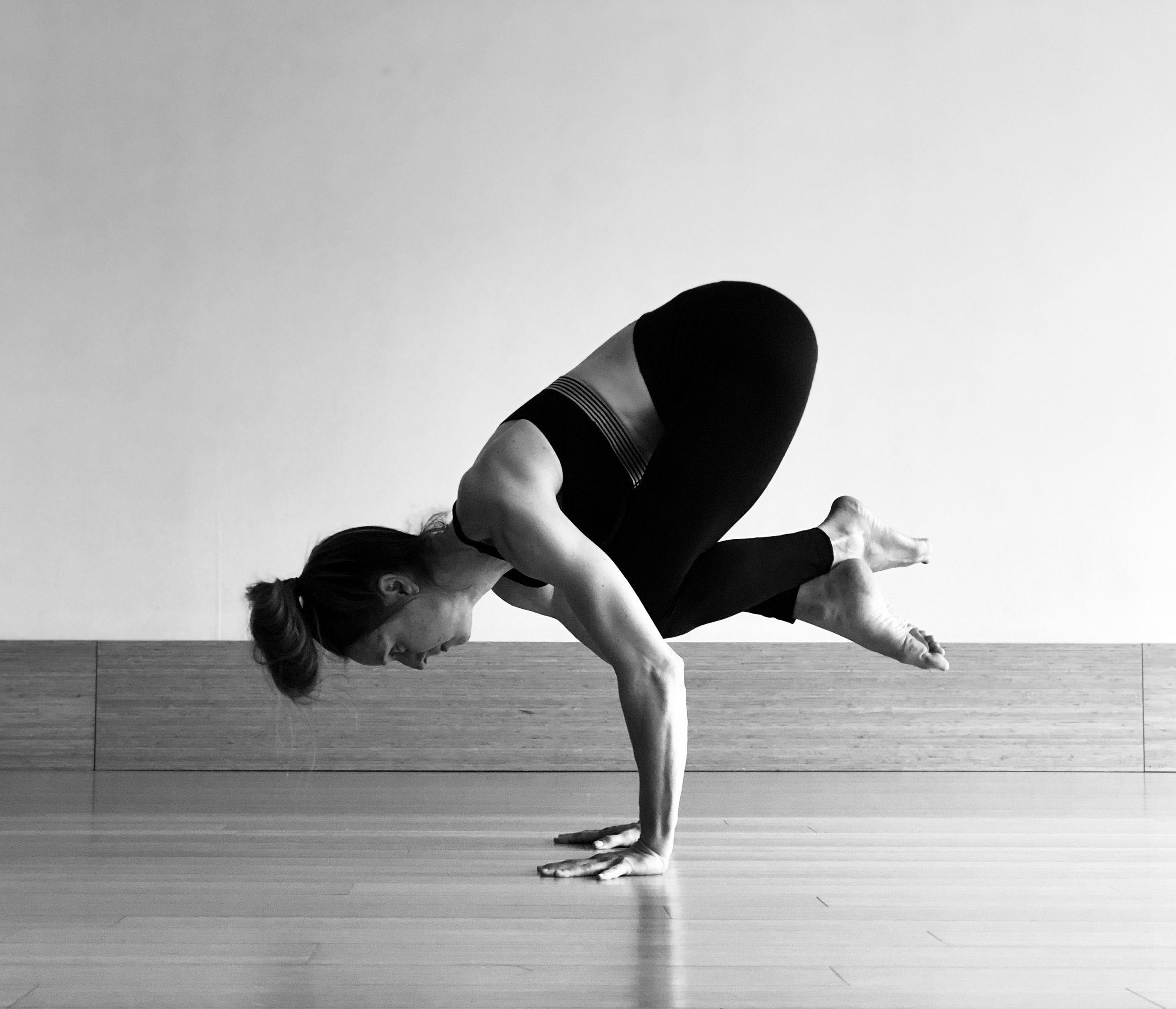 Downward Dog - 735 Queen St W 2nd Floor(416) 703-8805