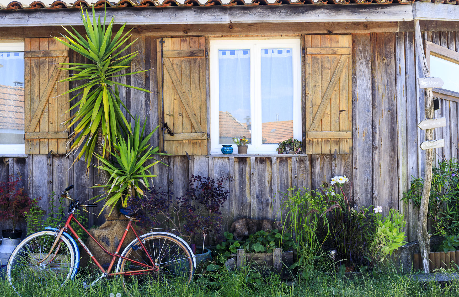 Piraillan-Cap Ferret-France-SH-Jul18-HiRes05.jpg