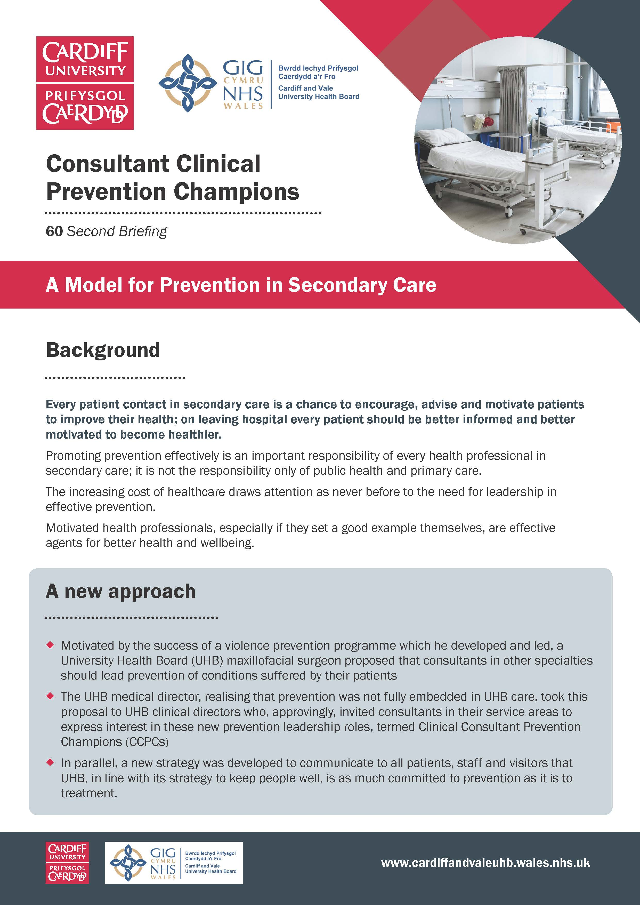 Consultant Clinical Prevention Champions 60 second briefing 2_Page_1.jpg