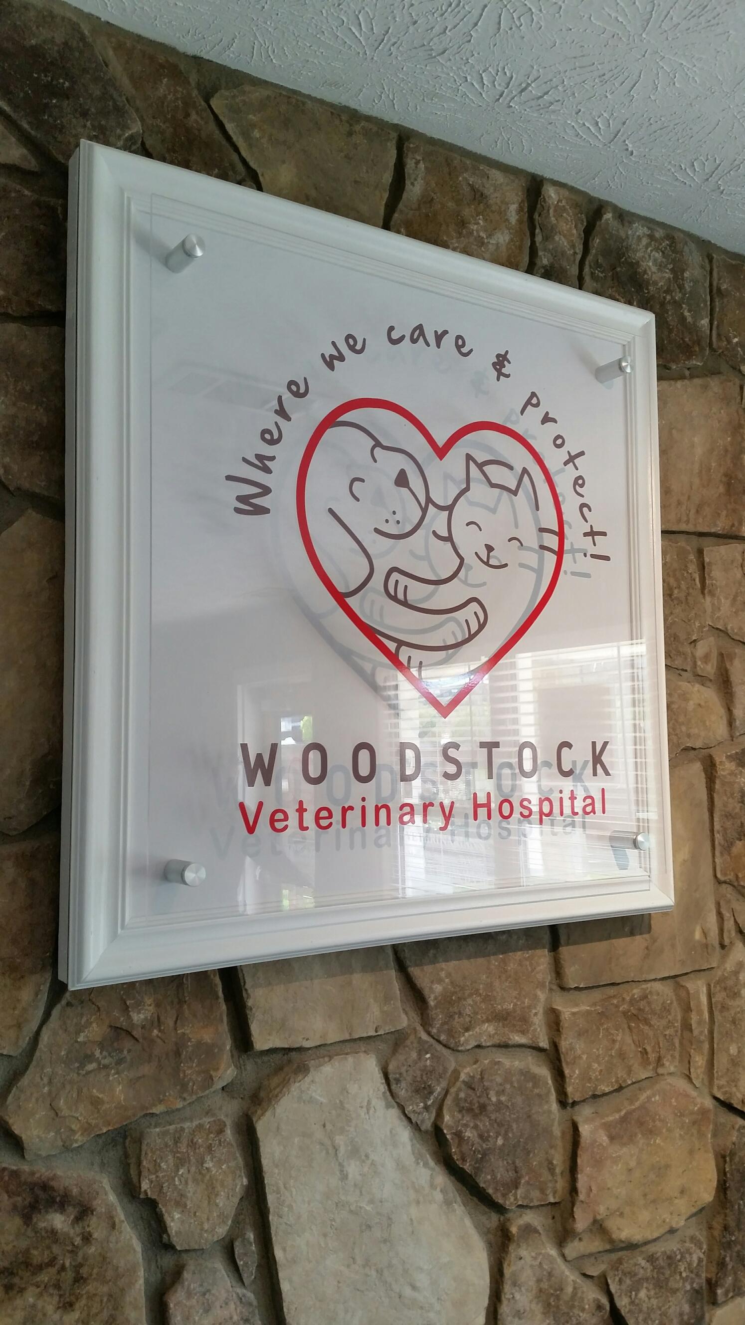 woodstock vet - interior.jpg