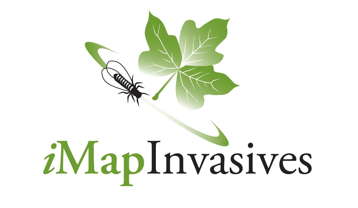 iMapInvasives_logo_large_color_notag_crop.jpg