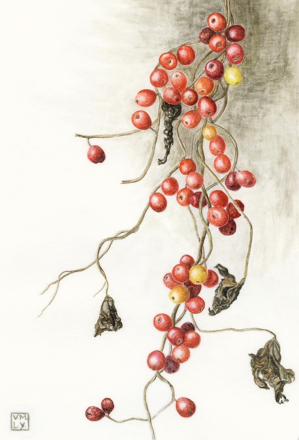 Winter hedgerow, Monknash