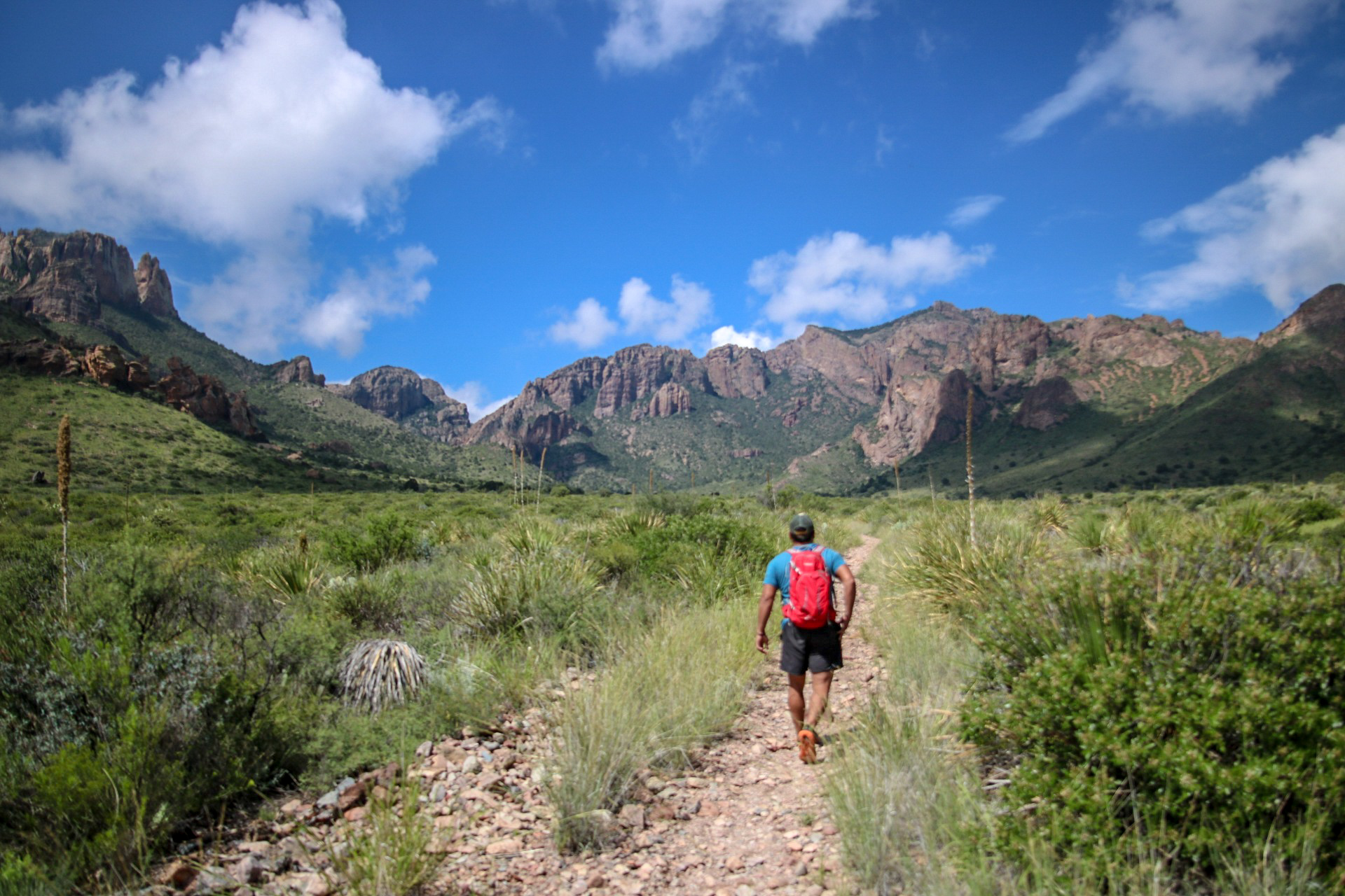 Big BEND IS HUGE - The BIG BEND CHAMBER OF COMMERCE is dedicated to