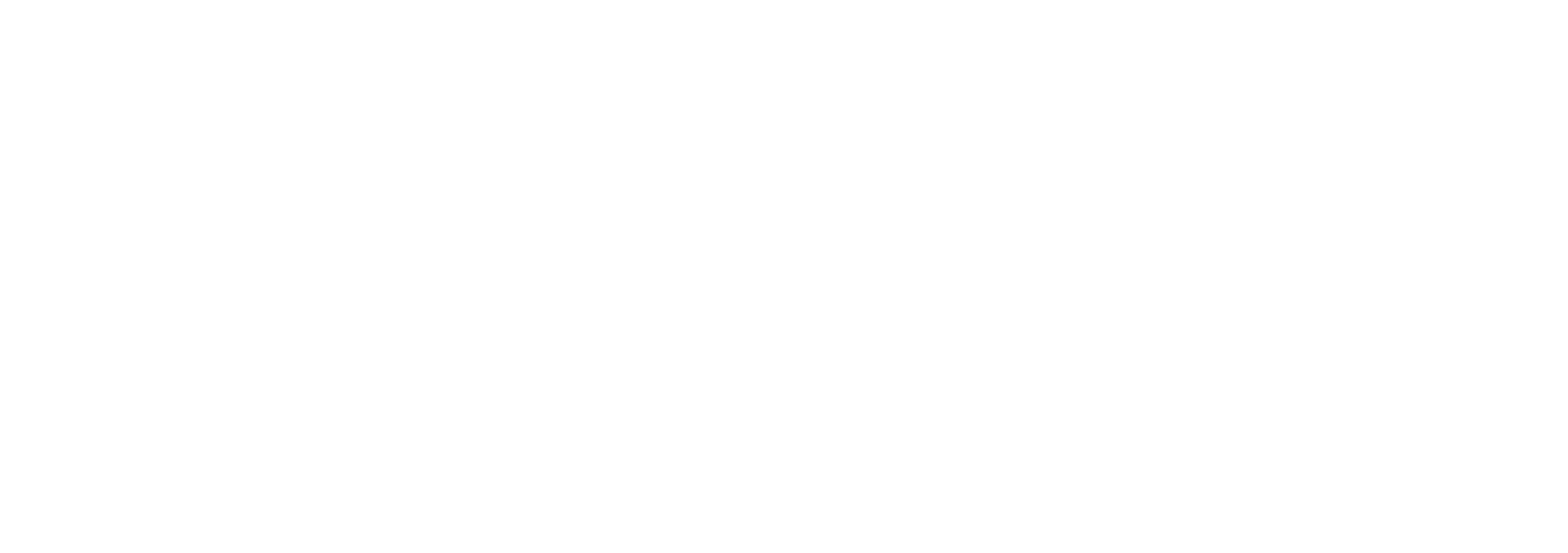 North Shore Logo_00000.png