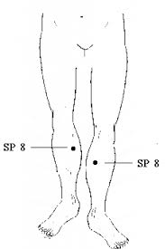 RESEARCH ON SPLEEN 8 - In my acupressure class, I focused my studies on acupressure for period symptoms and one research study that I focused on was this one. In a nutshell: they looked at how two different pressure points had an effect on primary dysmenorrhea (cramping pain in the lower abdomen occurring experienced during your period, without contributing other diseases). To explore the effect of the pressure points SP6 and SP8 on managing cramping pain, the research team utilized a crossover clinical trial design. The sample was 42 females aged 18–30 years old who met the study criteria. Pain scores and symptoms were measured immediately after acupressure, 30 minutes after acupressure, 1 hour after acupressure, and 2 hours later. The reductions in pain severity were significant for all intervals and at both SP6 and SP8 points (P < 0.001). Comparison of the acupressure applied at SP6 and SP8 points revealed that, for all intervals, acupressure at the SP8 point reduced pain severity significantly more than the SP6 point (P < 0.001).This study reveals promising results for acupressure in the management of dysmenorrhea symptoms for female patients. It demonstrates the efficacy of acupressure in order to improve cramping and other associated symptoms. This research is also useful in its direct comparison of SP8 and SP6. Many other studies focused on acupressure management in dysmenorrhea only tested with SP6. The fact that SP8 could be more effective sparks interest for future research. Many women suffer from pain during their cycle and often turn to medications like NSAIDS, midol, and tylenol to manage symptoms. Not only is acupressure free, but it reduces side effects of long-term medication use. This study also demonstrates that acupressure can be taught and easily implemented. This can be used as a non-invasive modality in managing menstrual pain and symptoms.REFERENCE: Gharloghi, S., Torkzahrani, S., Akbarzadeh, A. R., & Heshmat, R. (2012). The effects of acupressure on severity of primary dysmenorrhea. Patient preference and adherence, 6, 137.