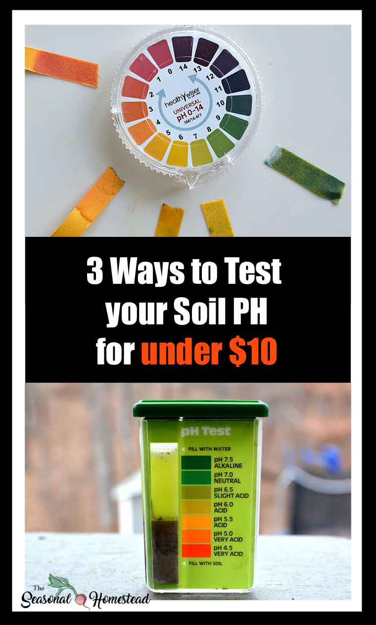 3-ways-to-test-your-soil-ph-for-under-$10-pin.jpg