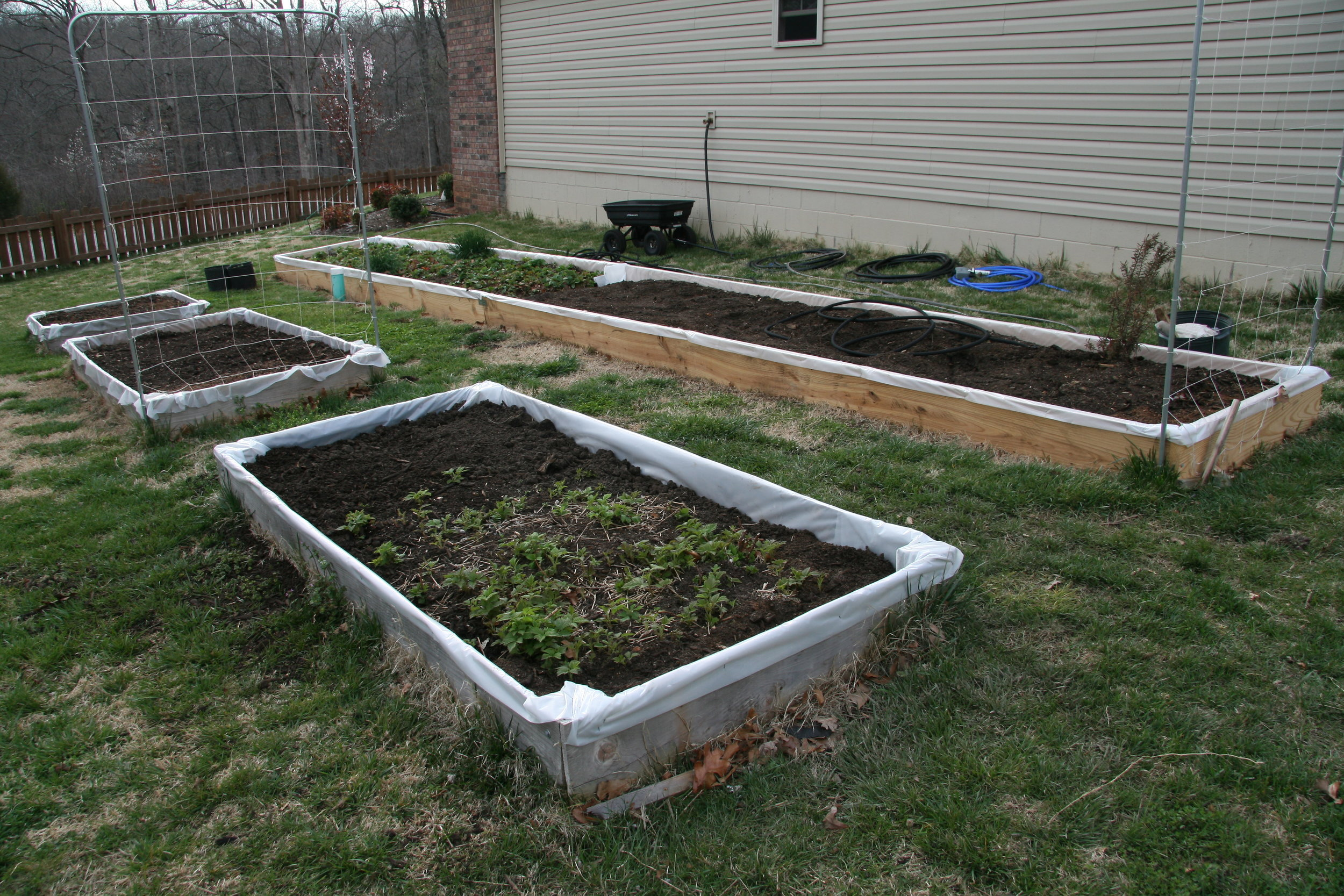 My first Garden, lined with plastic because I didn't want to spend the money on cedar