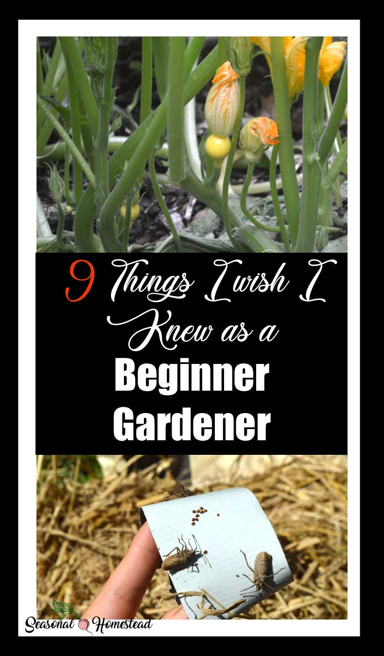 9ThingsI-wish-I-knew-as-a-beginner-gardener.jpg