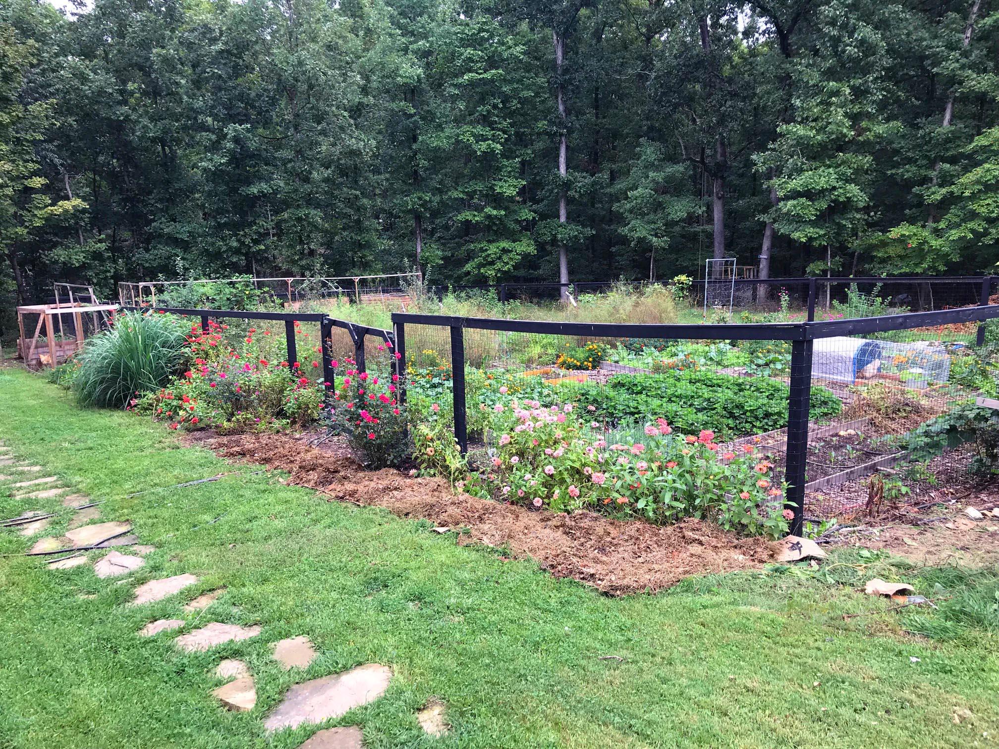 my quater acre garden