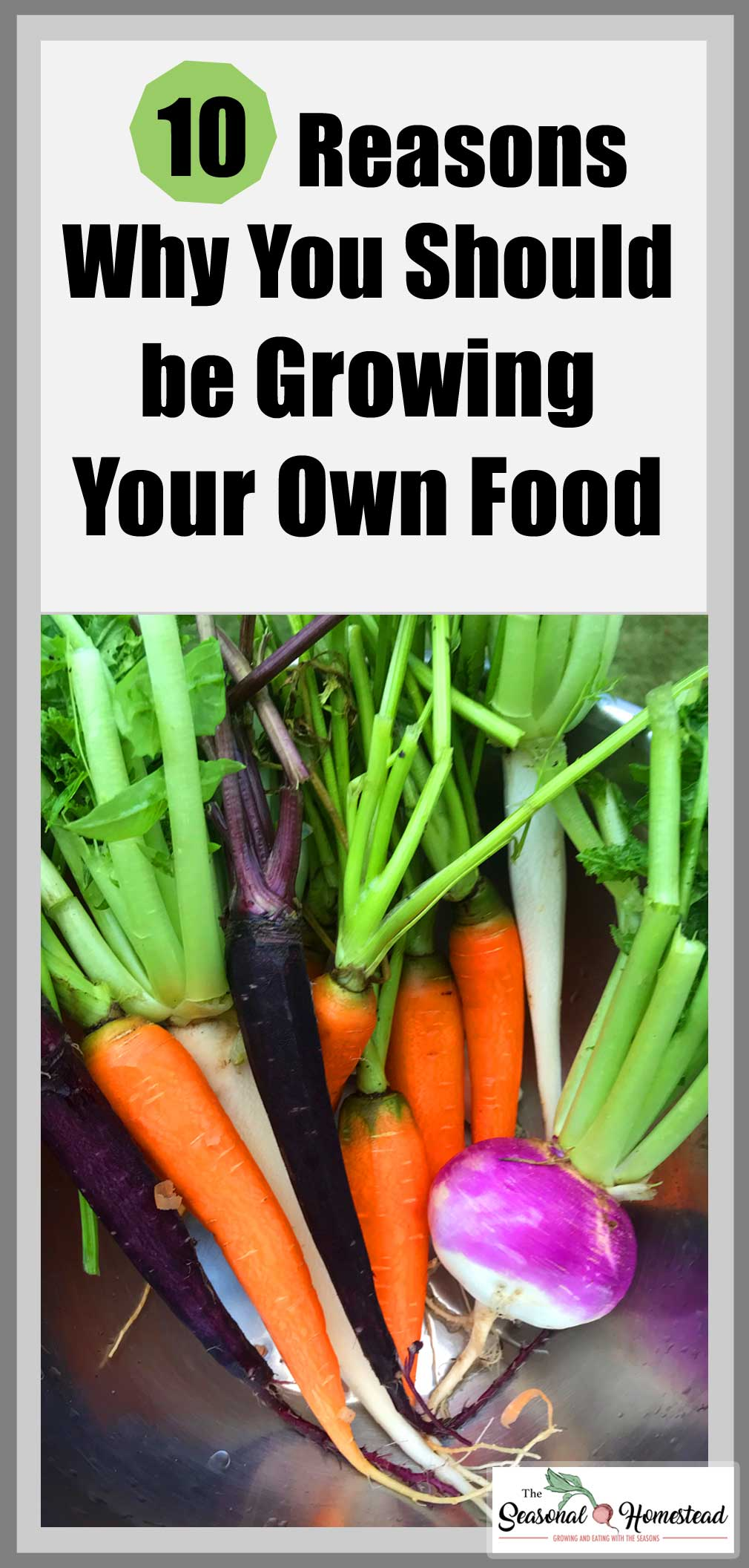 10-Reasons-Why-You-Should-Be-Growing-Your-Own-Food.jpg