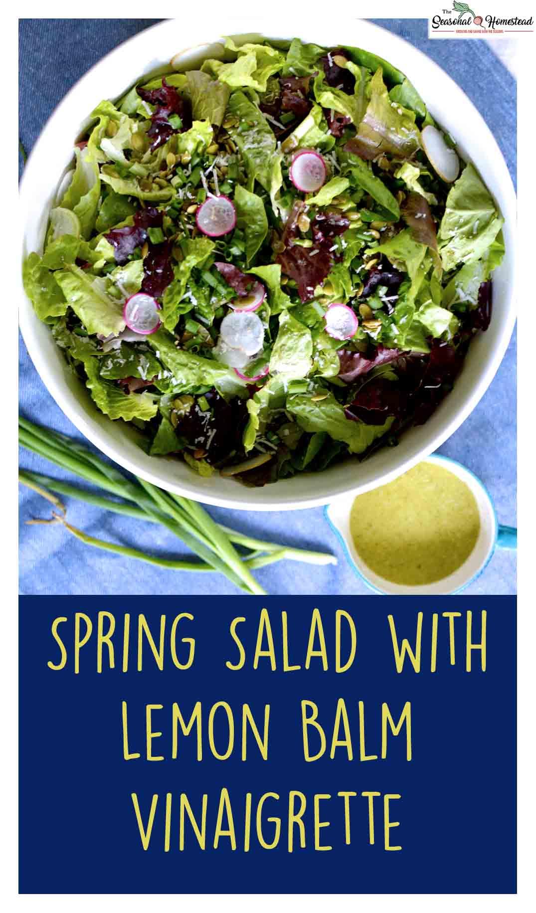 Spring Salad with Lemon Balm Vinagrette.jpg
