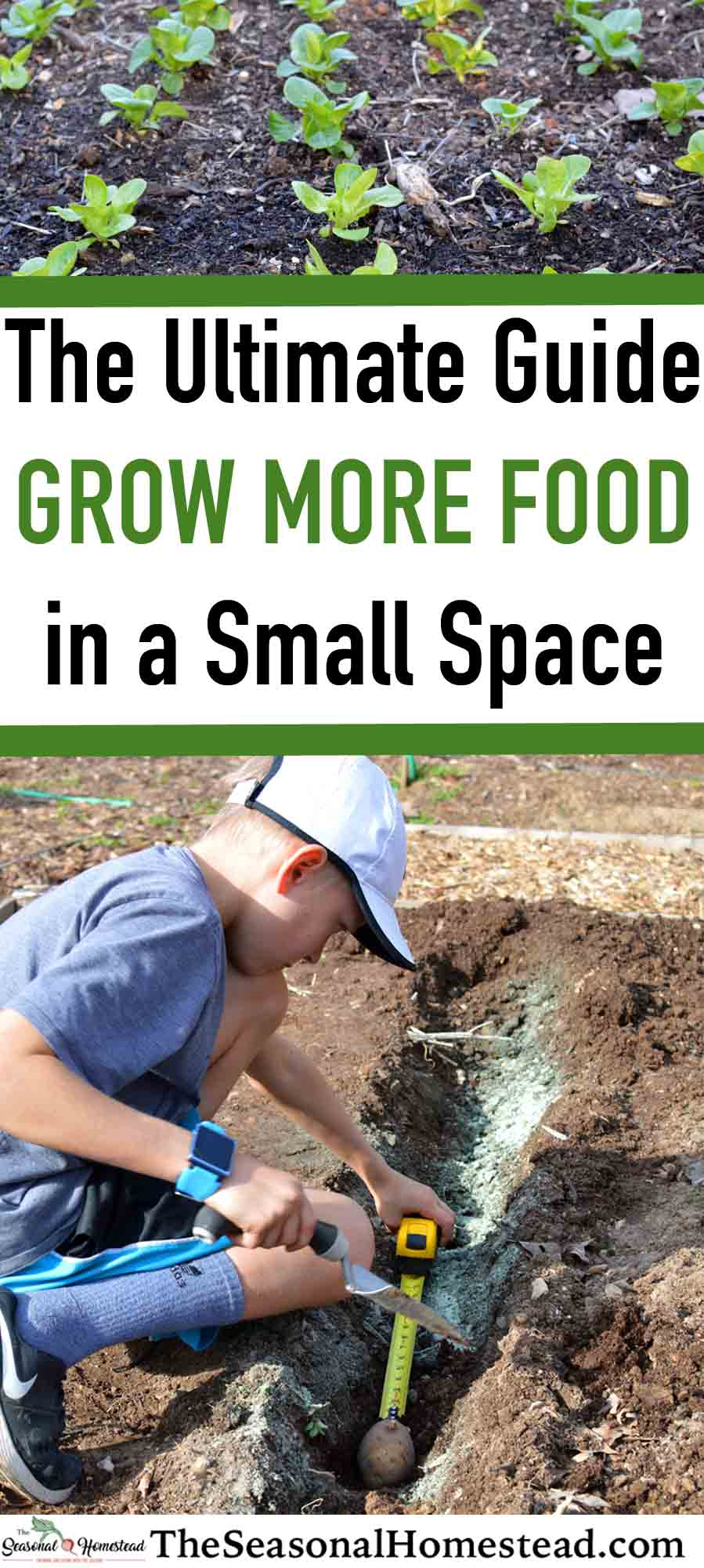 The Ultimate Guide To Growing More Food in a Small Space.jpg