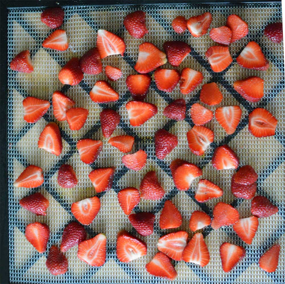 Before Dehydrating Strawberries