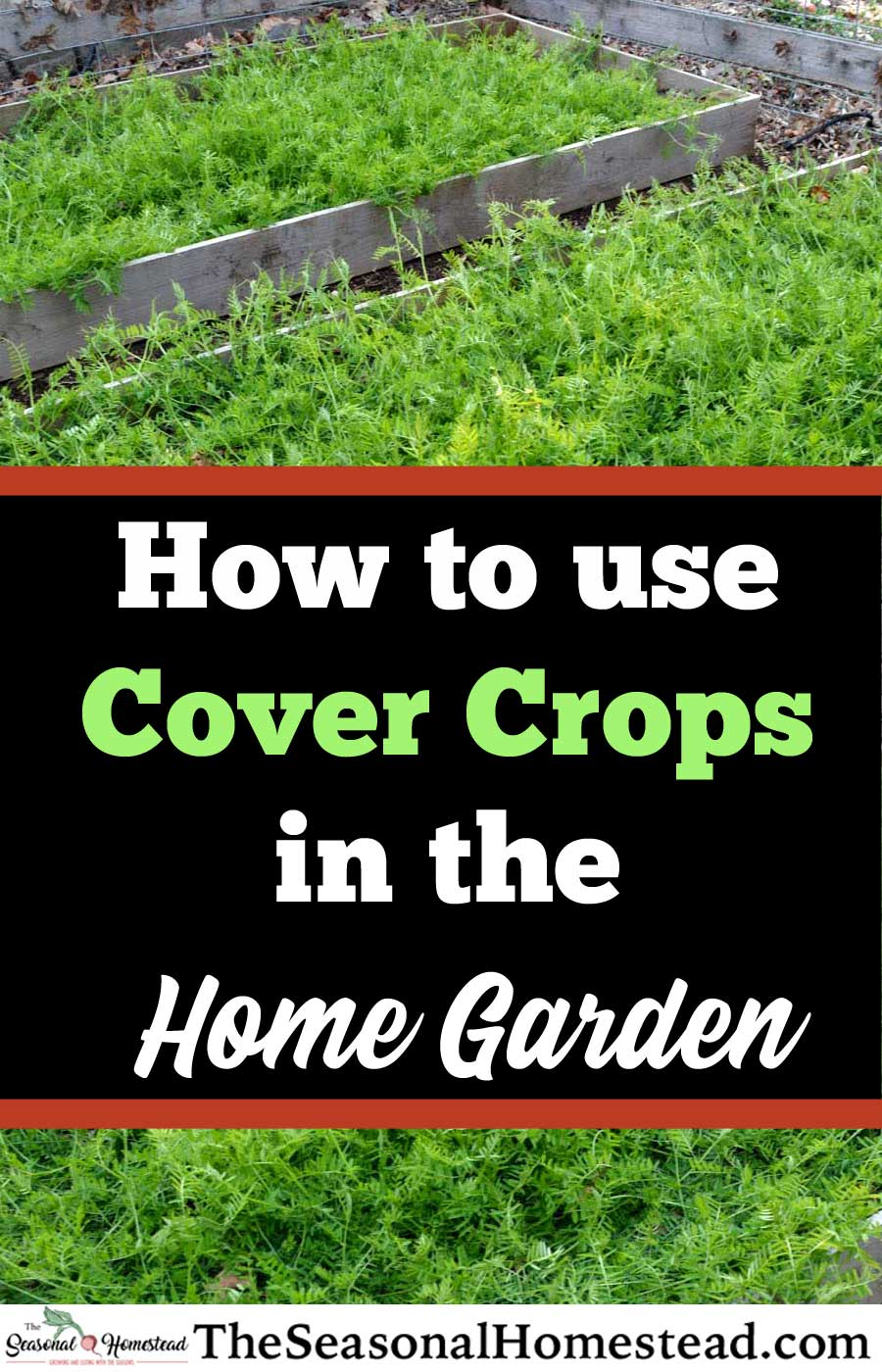 How-To-Use-Cover-Crops-in-the-Home-Garden.jpg