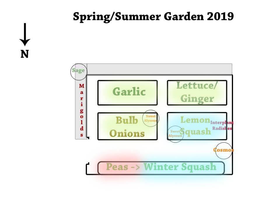 Spring-Summer-Small-Garden2019 Crop Rotation Colors.jpg