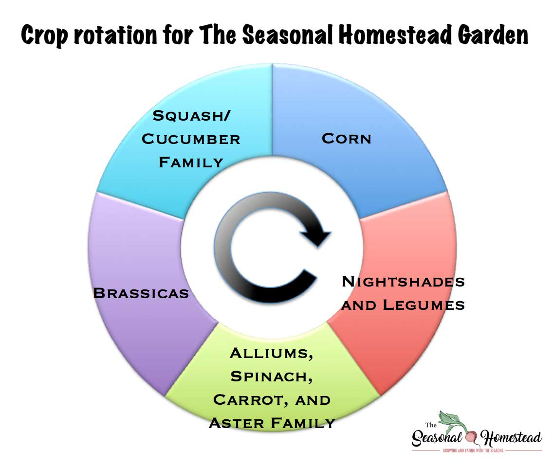 Crop-Rotation-Seasonal-Homestead-Garden.jpg
