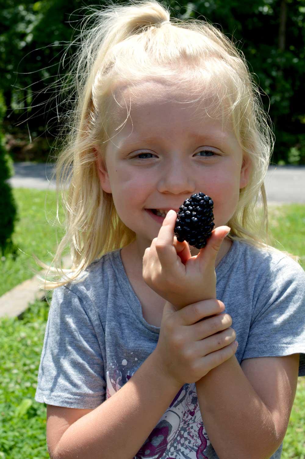 Kiowa Blackberry