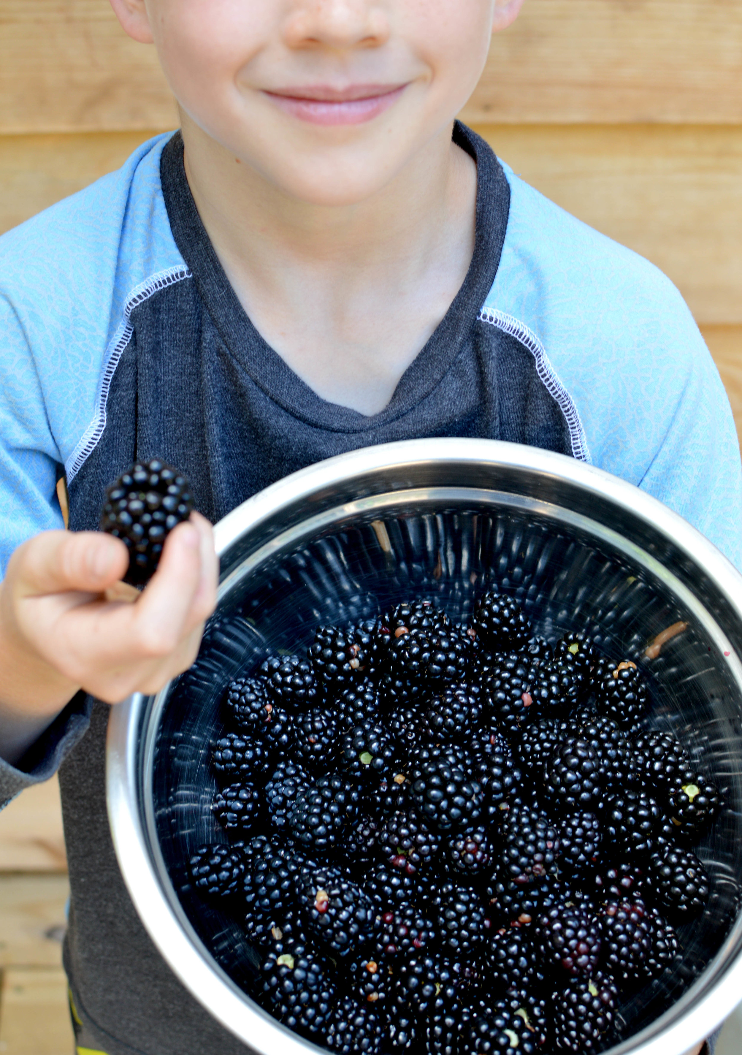 Dax and Blackberries.jpg