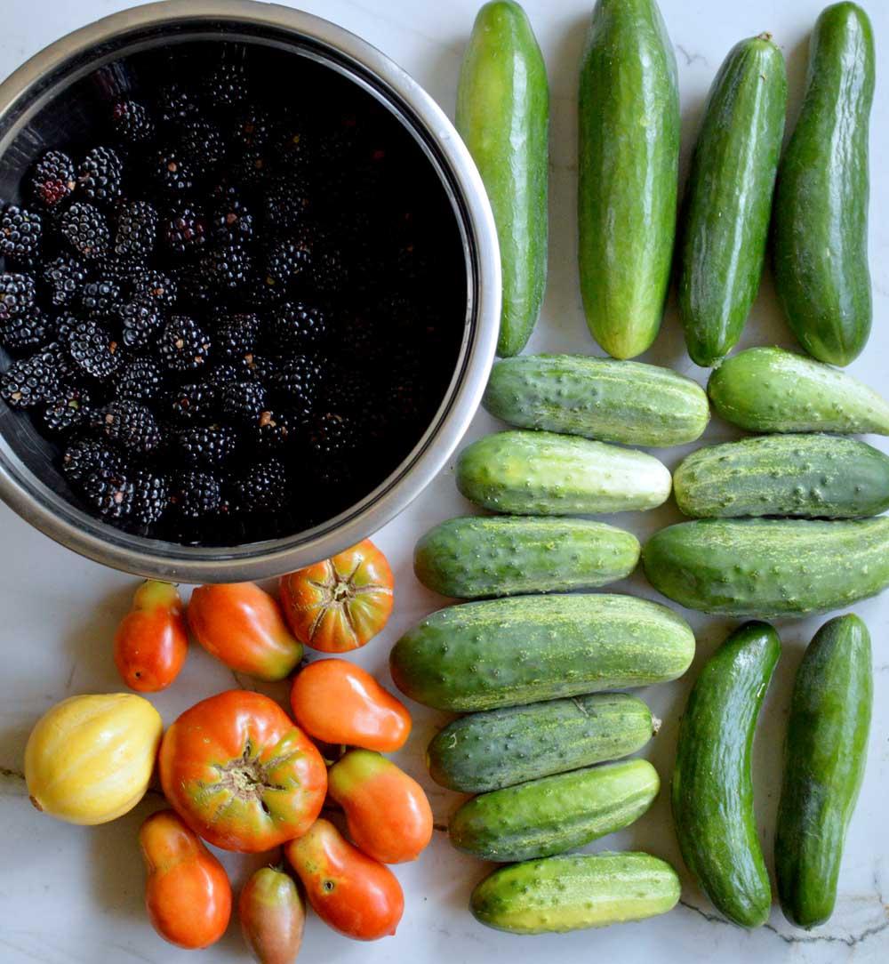 July4-Harvest.jpg