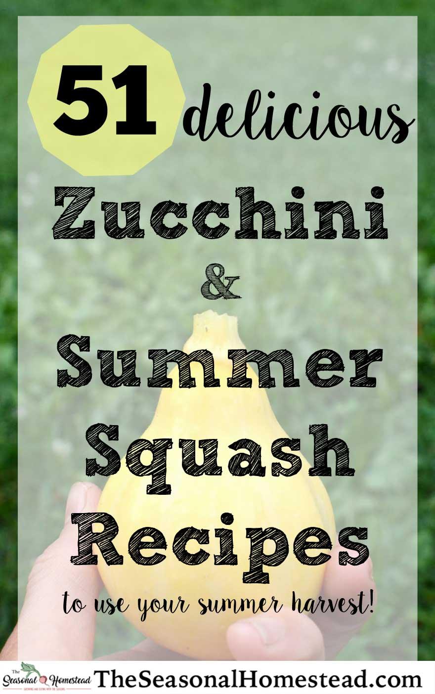 51-zucchini-and-Summer-Squash-Recipes.jpg