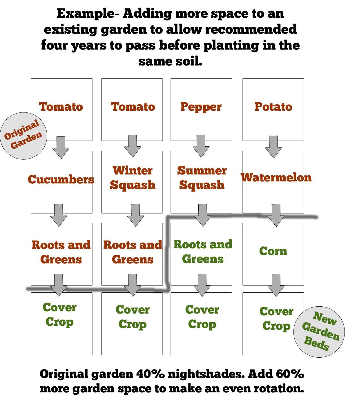 crop-rotation-tomatoes.jpg
