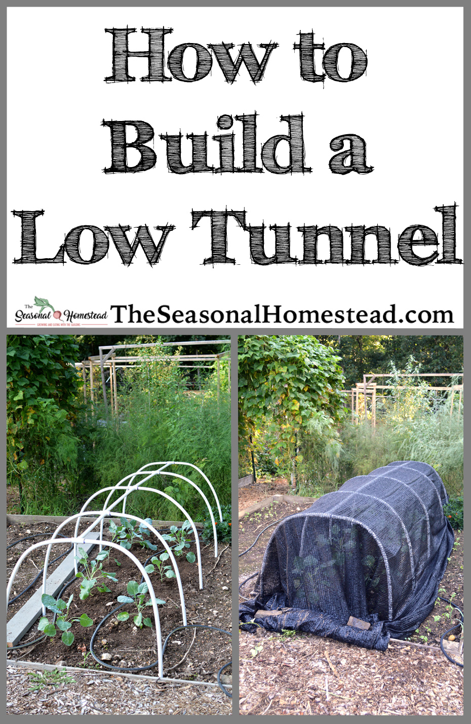 How to Build a Low-Tunnel.jpg