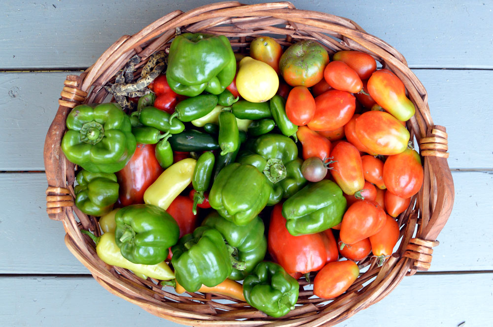 Harvest-basket-August-10ish.jpg