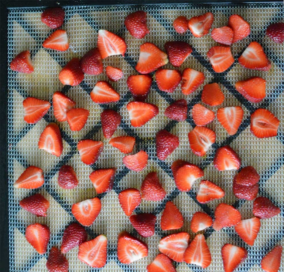 Dehydrating-strawberries-before.jpg