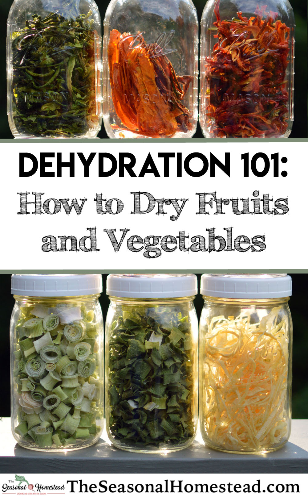 How-to-Dry-Fruits-and-Vegetables.jpg
