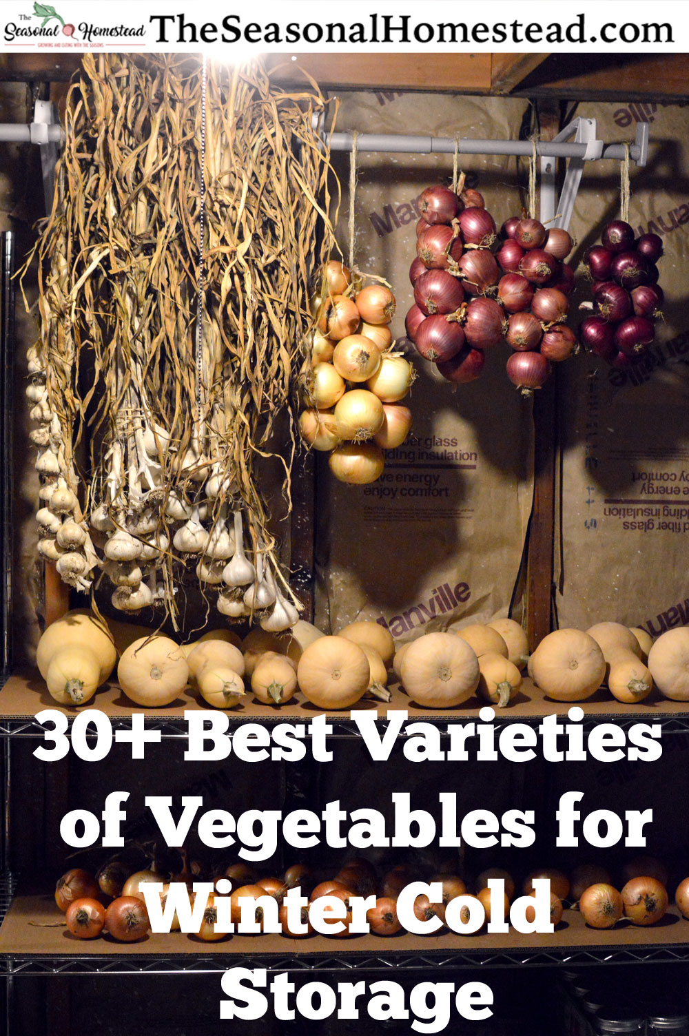 30-best-varieties-of-vegetables-for-winter-cold-storage.jpg