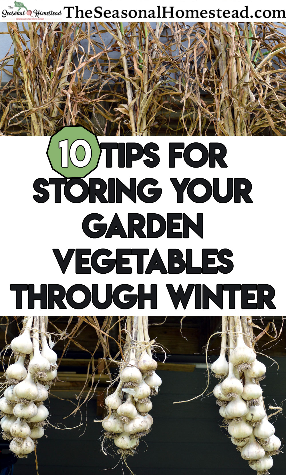 10-Tips-for-stoiring-your-garden-vegetables-through-winter.jpg