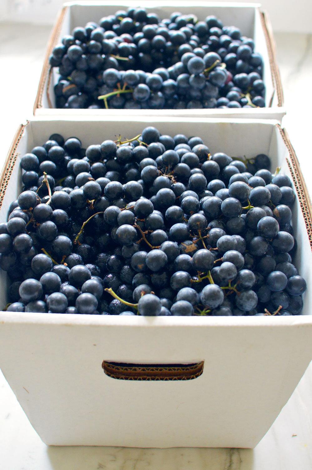 Better-Grapes.jpg