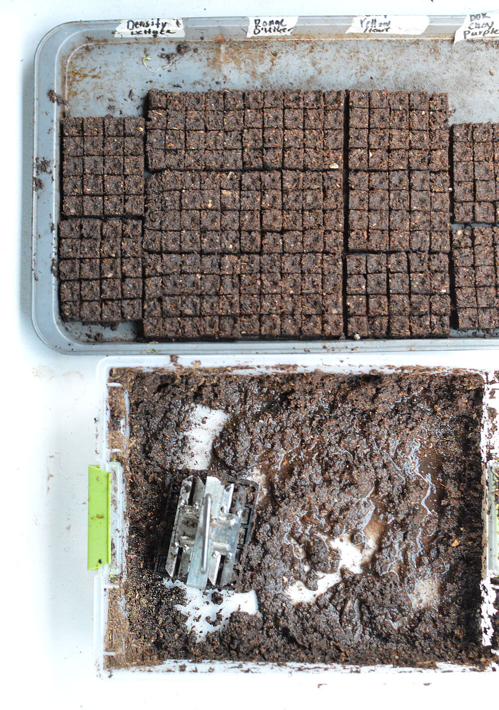 Mini-Soil-Block-Making1.jpg