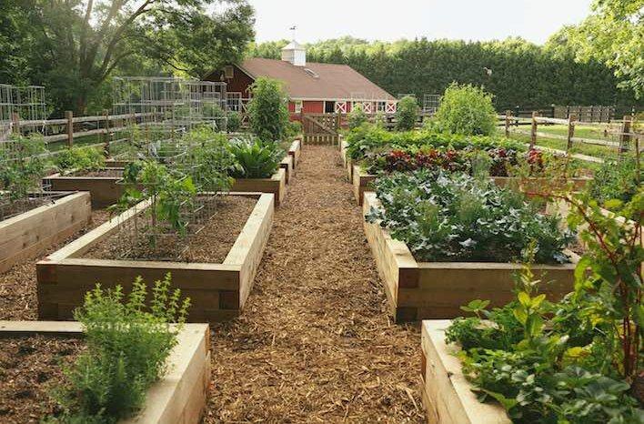 Joe Lamp'l's Garden Farm, photo Courtesy of  Joe Gardener