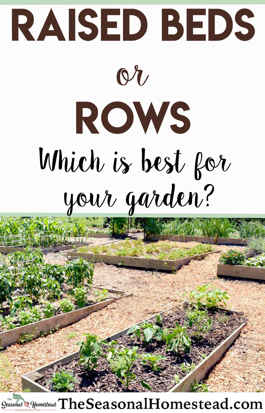 Raised-Beds-or-Rows-Which-is-best-for-your-garden.jpg