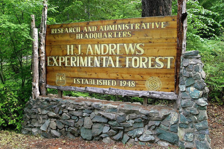 hj-andrews-forest-entrance-oregon-robert-mutch.jpg