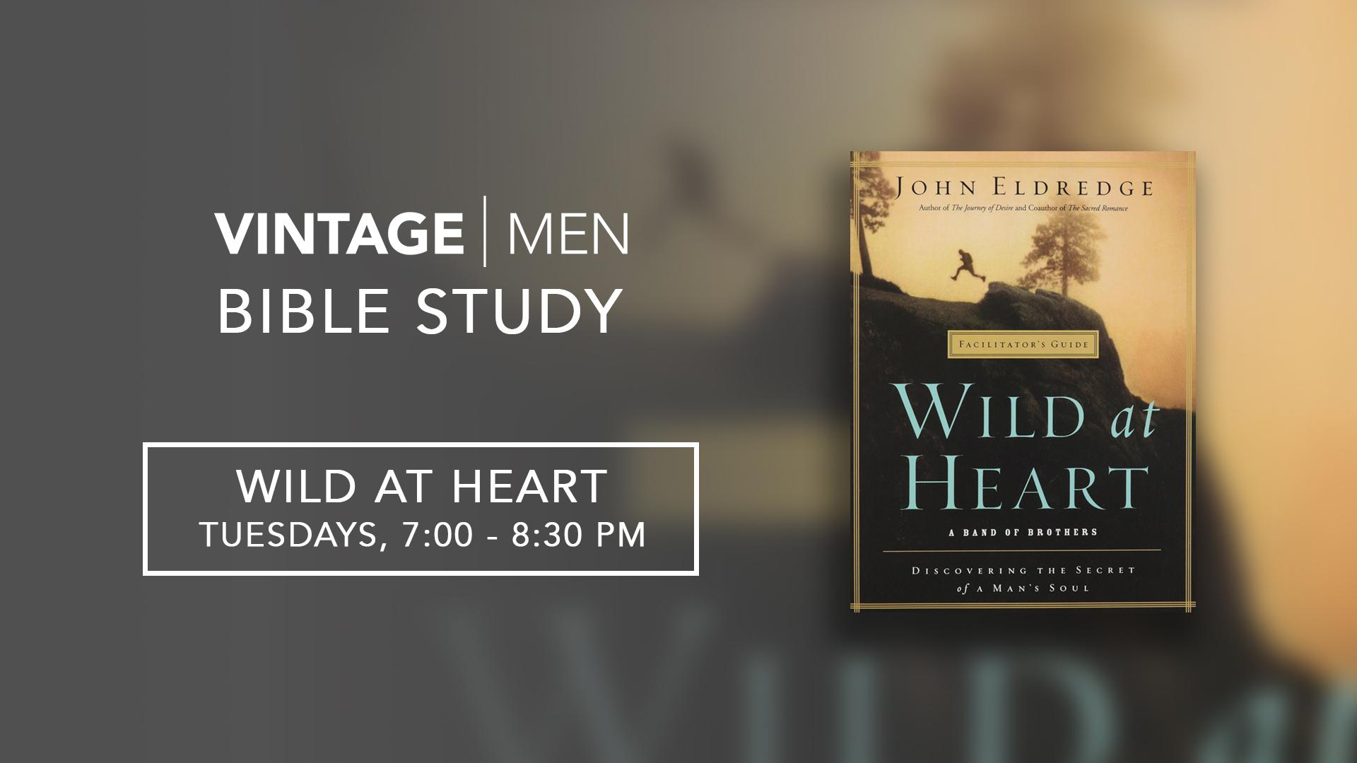 Men_BibleStudy_WildAtHeart.png